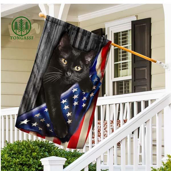 Cat Climbing American Flag