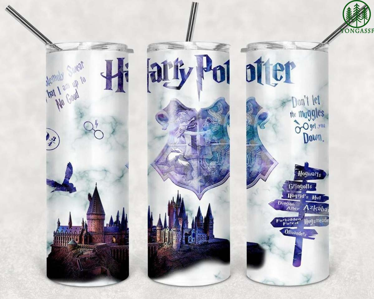 Harry Potter wizard world skinny tumbler