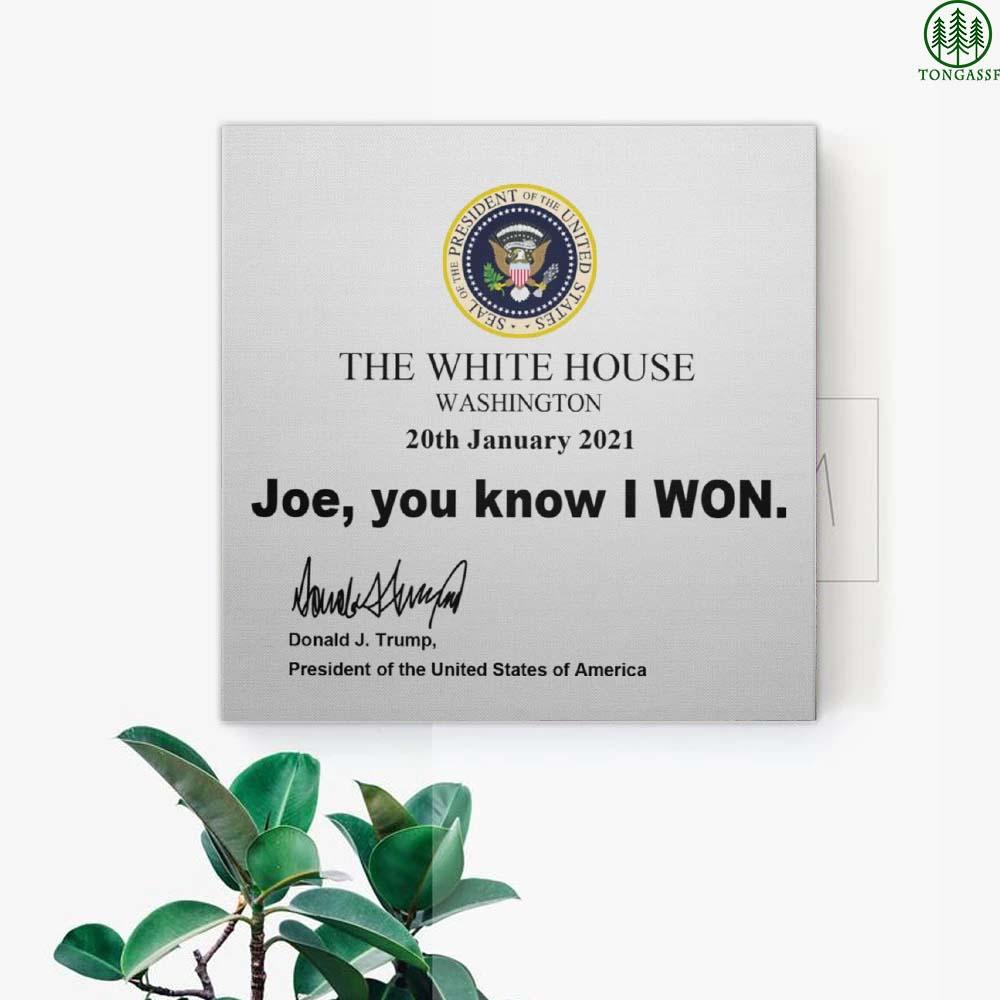 Joe You Know I Won Canvas