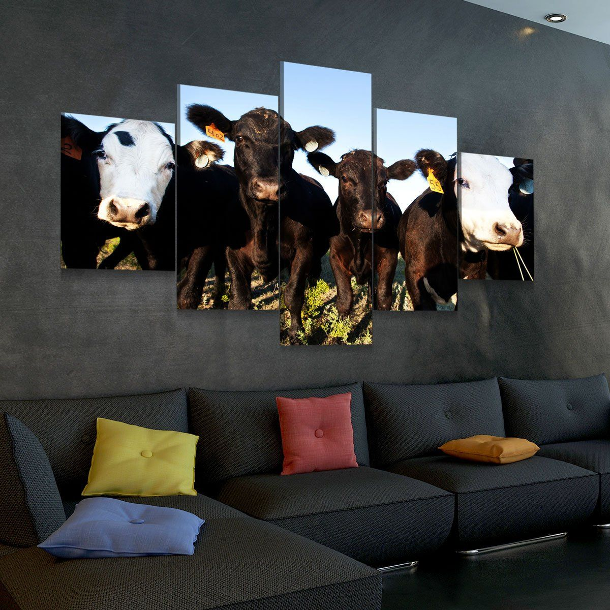 Angus Cattle 5 panel canvas wall art