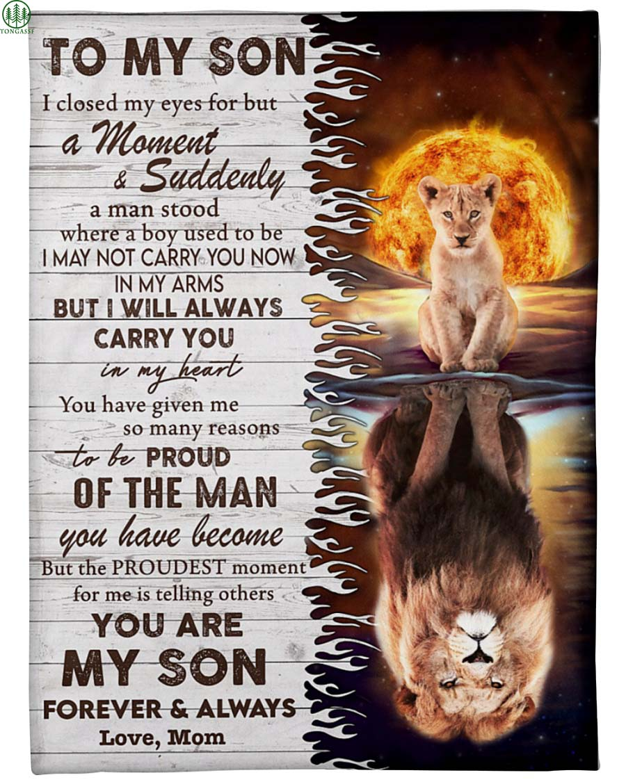 love son father lion family with sun behind blanket