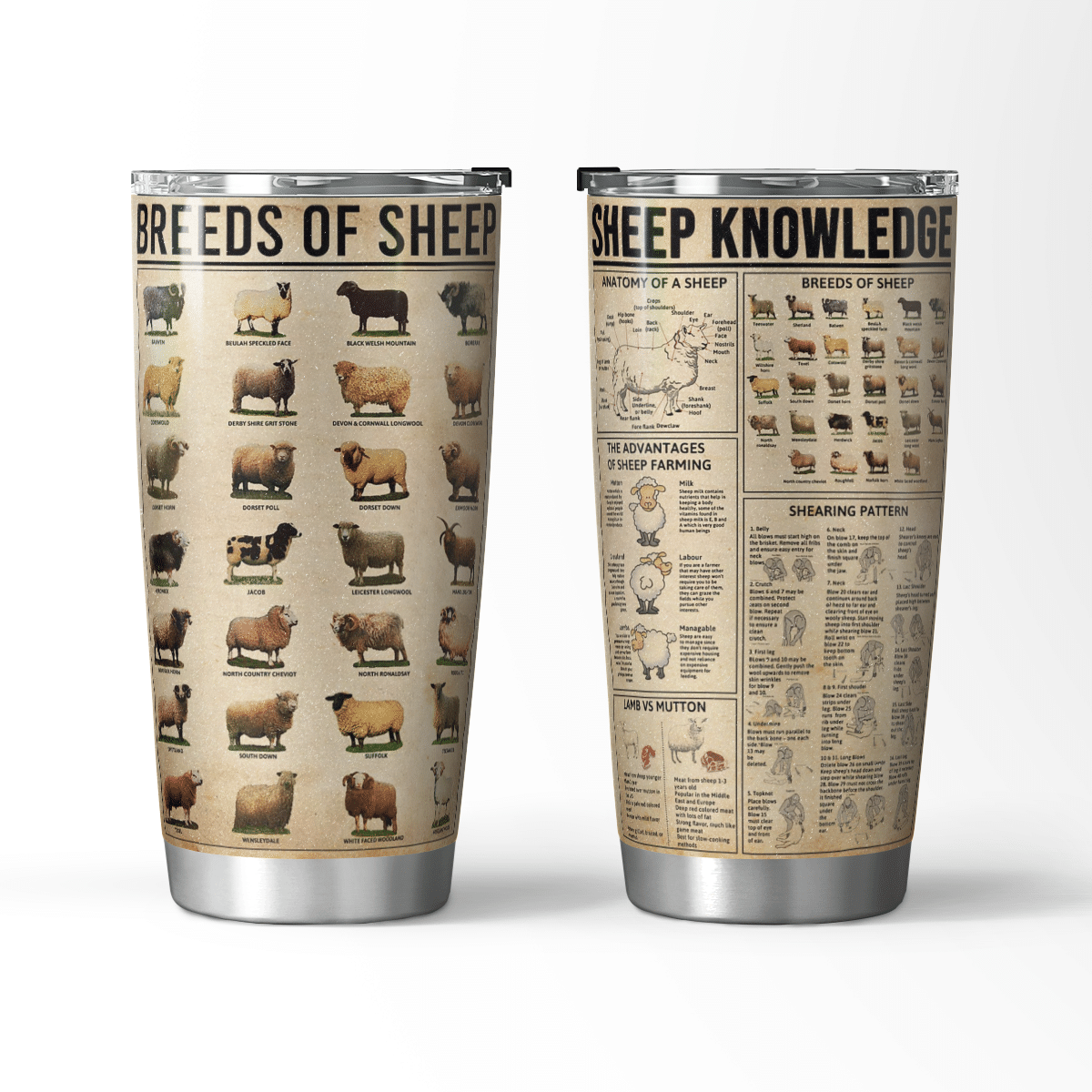 Breeds of sheep knowledge farmer love tumbler Cup
