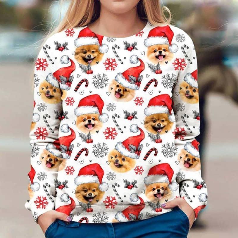Pomeranian Christmas Premium Sweatshirt